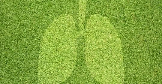 Chronische Sinusitis und Asthma, eine Erkrankung der oberen und unteren Atemwege