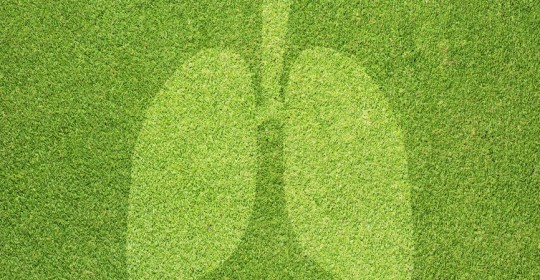 Lungenheilkunde Harlaching und Grünwald