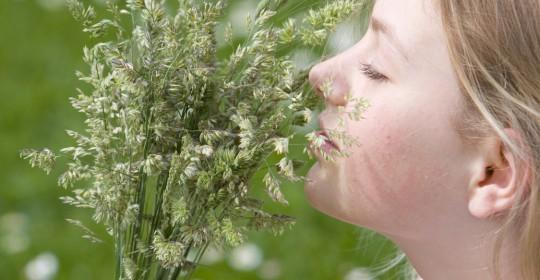 Allergiker erhalten seltener adäquate Therapie