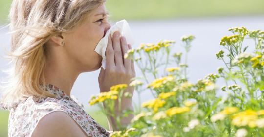 Allergietest und Allergiebehandlung nicht vergessen